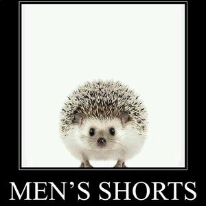 Other - Men's shorts